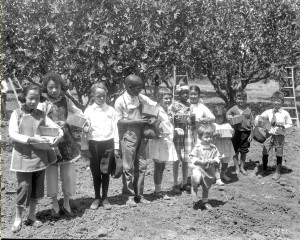 Children from all parts of Fresno County pose for a promotional photograph in the fig orchards of the Roeding Ranch - August 11, 1921